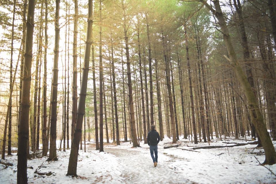 winter-walk